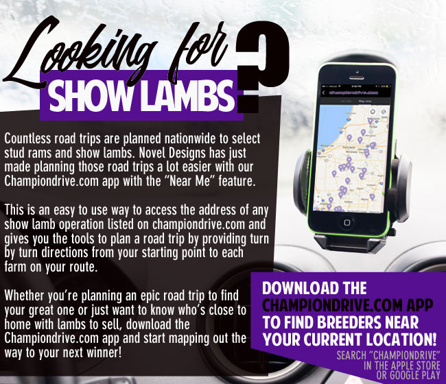 Championdrive com : Your Online Source for the Show Lamb Industry : Home