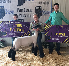 Indiana Jackpot Sheep Show Results