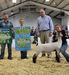 PA Sheep Show Results