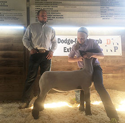 WI Jackpot Sheep Show Results