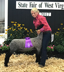 WV State Fair Sheep Show Results